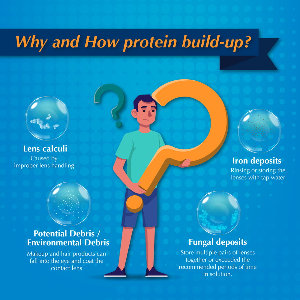 Why and How protein build-up from contacts?